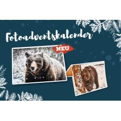Bärenwald Adventskalender